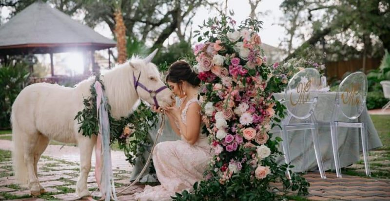 Pony and Bride